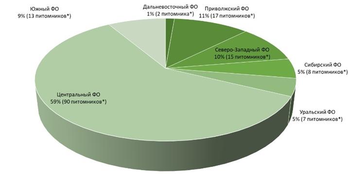 Дерево россии занимающие наибольшую площадь